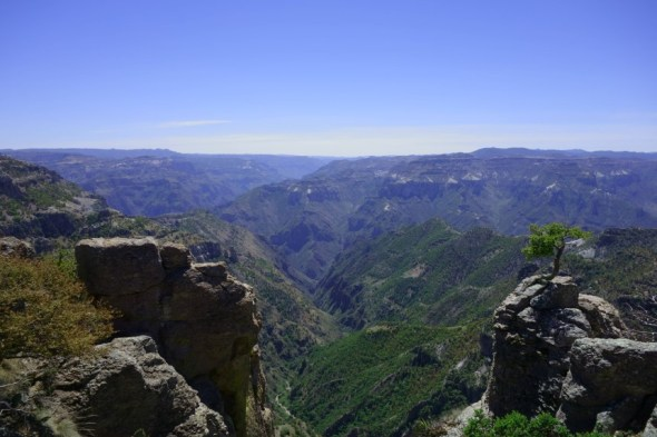 Copper Canyon (18)
