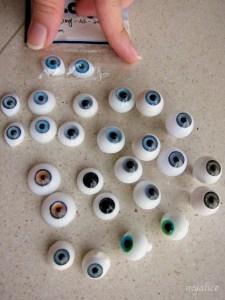 Eye family