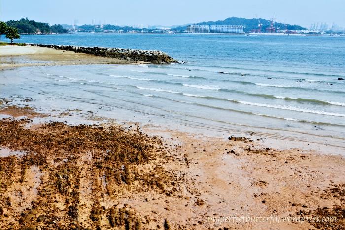 img 87571 Islands Of The Island Of Singapore Jamie Chan