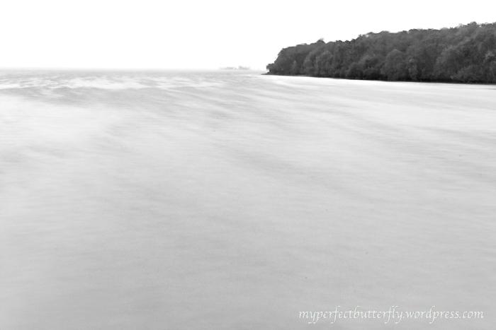 img 9365 Islands Of The Island Of Singapore Jamie Chan