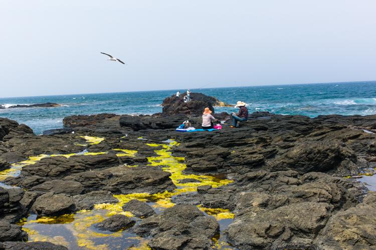 melbourne, ocean, fishing, australia, seagulls, Jamie Chan, Leica, No Foreign Lands, Visual Storyteller