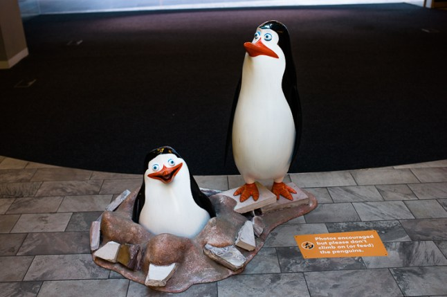 Penguins, Madagascar, Dreamworks Exhibition, Melbourne, Jamie Chan, No Foreign Lands, Blog, Leica