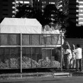 Chinese Funeral, Singapore, Traditional, Leica, paper house, offerings, burning