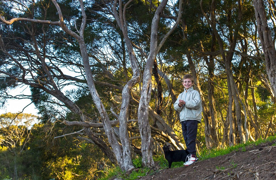 No Foreign Lands, Weekly Photo Challenge, Boy, Cat, British Short hair, forest, Jamie Chan, Leica M9, 50mm Summilux, Photography
