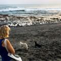 Jamie Chan, Beach, No Foreign Lands, Leica, Bali, Indonesia, Water, Travel, sunset, canggu, woman, dogs, echo, black sand
