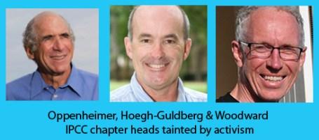 activist_IPCC_chapter_heads