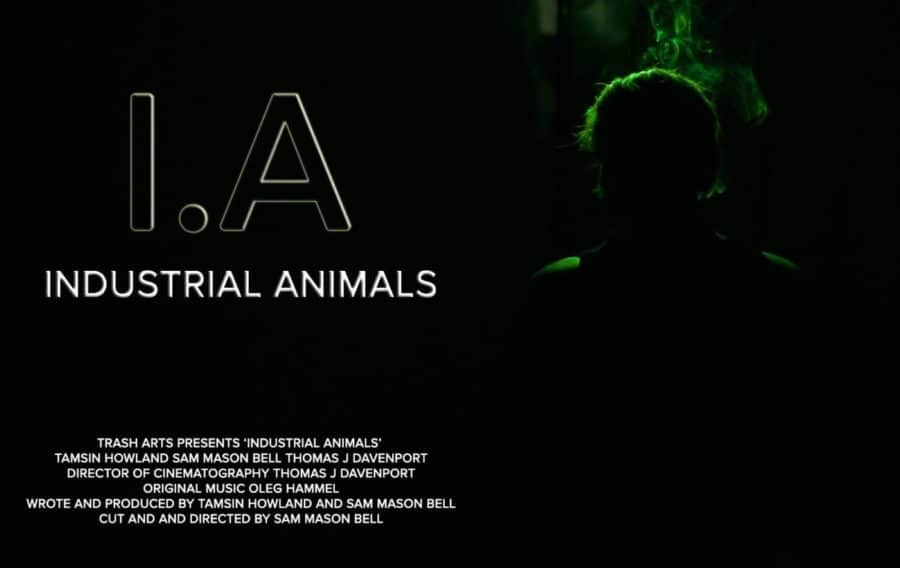 [Exclusive] Interview with Troma's INDUSTRIAL ANIMALS Director Sam Mason Bell