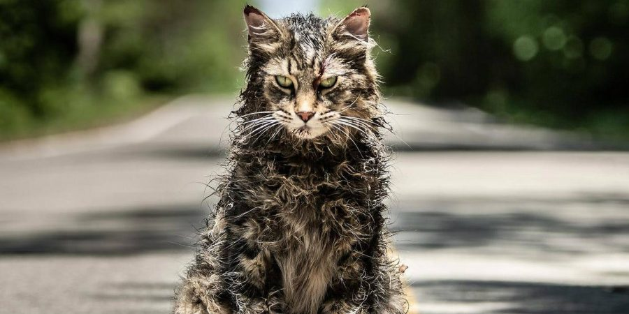 [Trailer] Lock Up Your Kitties, We Have the First Teaser for PET SEMATARY