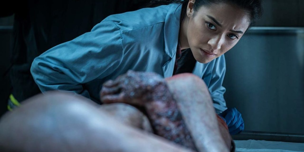[Review] Cadavers Can't Keep Still in THE POSSESSION OF HANNAH GRACE