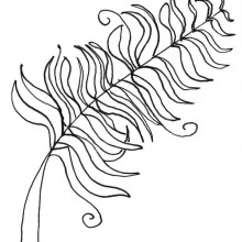 curlybracket_feather_icon