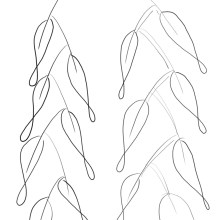 gumleaves_icon