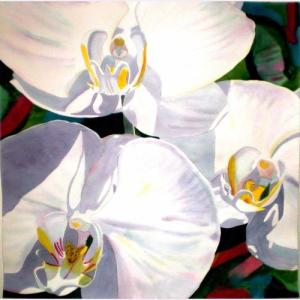Fabienne Blanc Original Watercolor Three Orchids Close Up 18 X 18