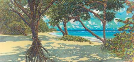 Russell Lowrey La'ie Beach looking North