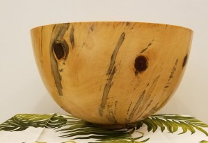 "Andy Cole Norfolk Pine 18"" x 18"" x 10"""