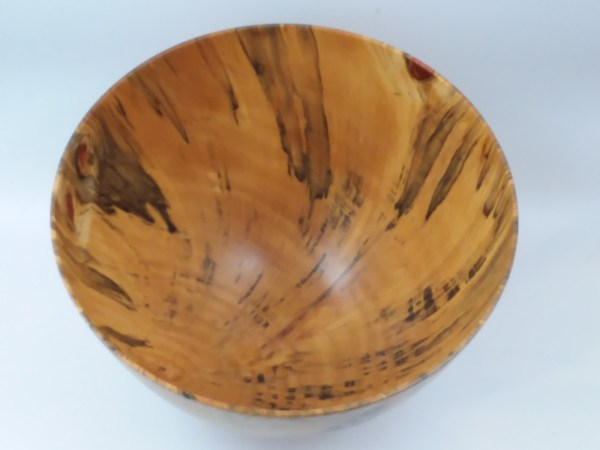 """Andy Cole Norfolk Pine Bowl 8"""" x 12"""""""