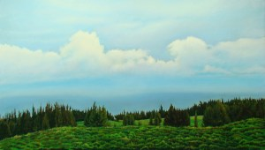 Early Light Honokaa original soft pastel by Gregory Pai