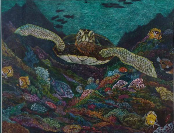 "Honu 11 original scratchboard by Cindy Conklin 16"" x 20"""