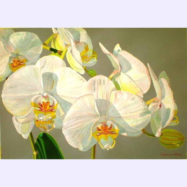 Orchids Vintageoriginal watercolor byFabienne Blanc