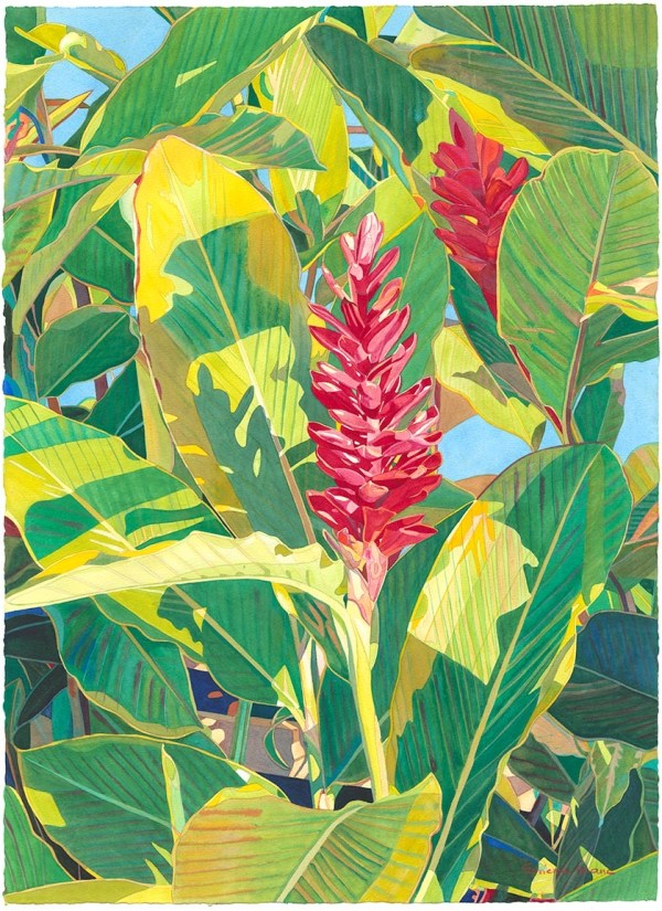 Painting Red Torch Ginger Original Watercolor 22 x 30 Fabienne Blanc