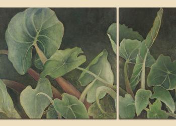 Ai Patricia Field Jade Garden Taro Sample