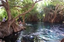 10/8/2016_Hot springs_Boma Ngombe_Tanzania