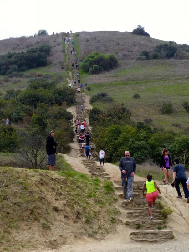 Baldwin Hills stairs