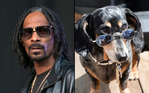 snoop-lookalikes_3553322k