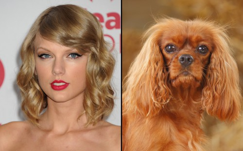 taylor-swift-looka_3553326k