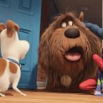 ペットを飼っている人なら誰もが考える素朴な疑問がテーマの映画『ペット』