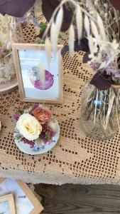 Aquarelle planète plante mlam noiram marion-lorraine poncet petite fleureuse