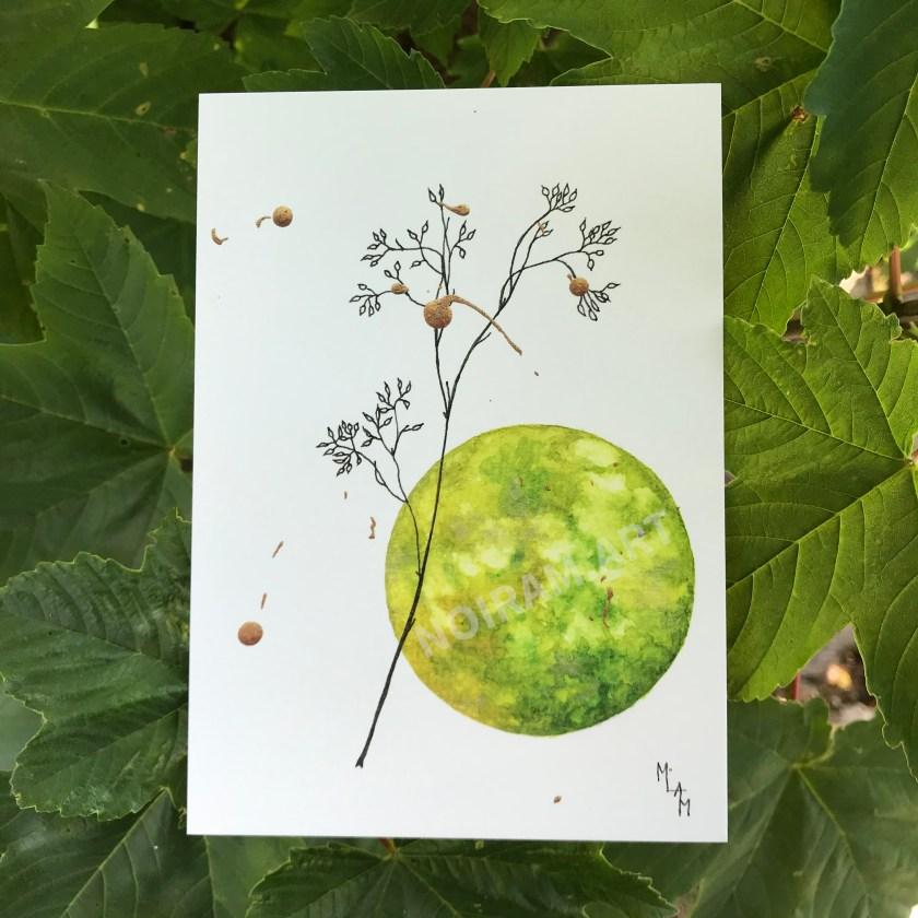 Aquarelle sylphide vert planète plante mlam noiram marion-lorraine poncet carte