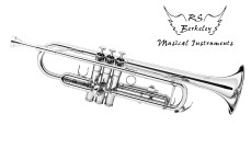 Musical Instruments (6)
