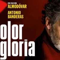 Dolor y gloria, Pedro Almodóvar reflexiona sobre la madurez de un director de cine