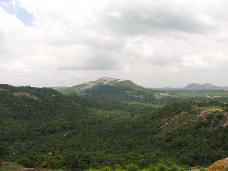 View from dodda ragihalli betta-Bannerghatta Natioanl park