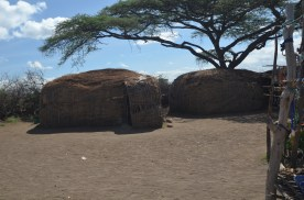 These Maasai homes are roughly four feet tall and cover about 48 square feet.
