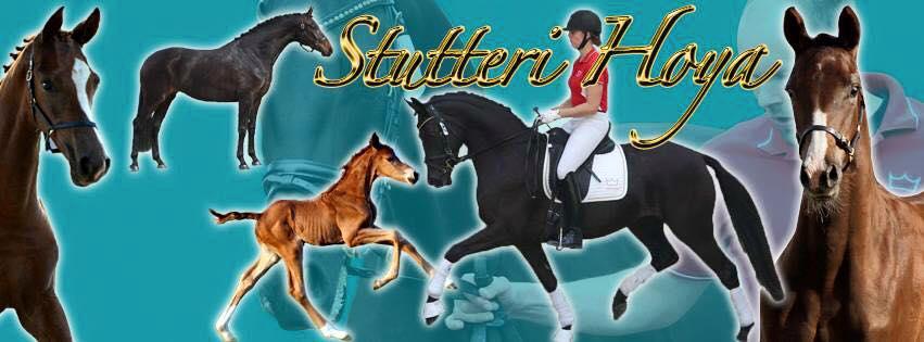 Stutteri Hoya facebook cover