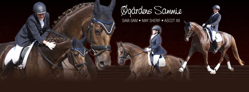 Øgårdens Sammie facebook cover