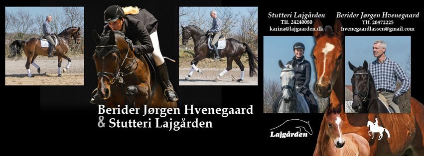 Jørgen Hvenegaard og Lajgården facebook cover