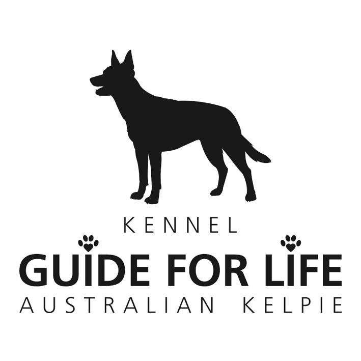 Guide For Life logo