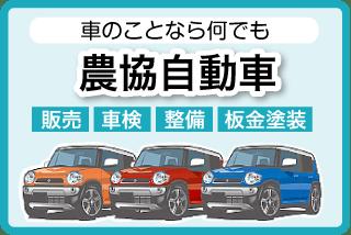 top-autoservice-banner