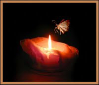 People run toward the light, the positive, like a moth to the flame