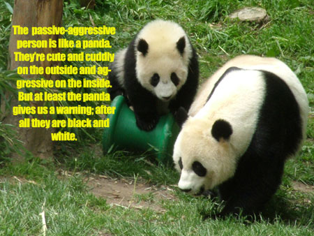 black and white panda passive-agressive behavior