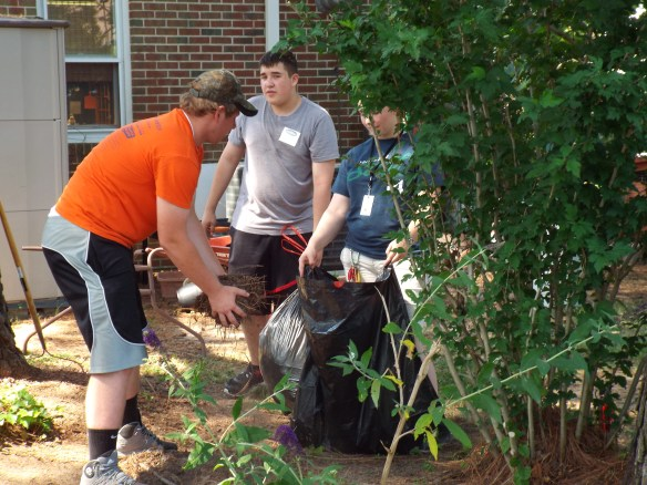 Youthworks crew helping us out last summer.