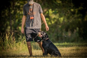 NO_LIMITS_KENNELS_2017_7_27 (143 of 215)