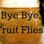 How to Get Rid of Fruit Flies Fast and Naturally