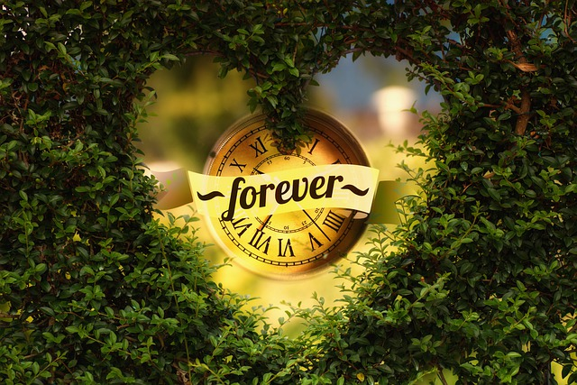 This is a timepiece with the word forever in the center of a heart made from greenery. It symbolizes the promises of God which are forever on one condition.