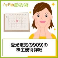 愛光電気(9909)の株主優待