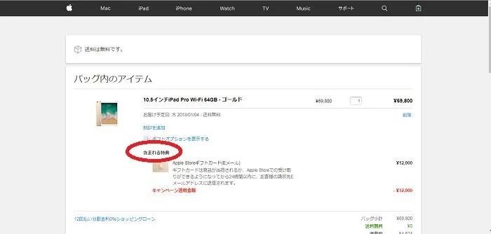 apple初売り 購入画面・特典表記