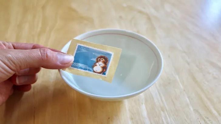 一度貼った切手をお湯で綺麗にはがす方法(切り取った62円切手をお湯に浸す)