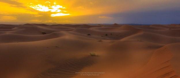 Deserto do Sahara, por Pedro Sander Becker